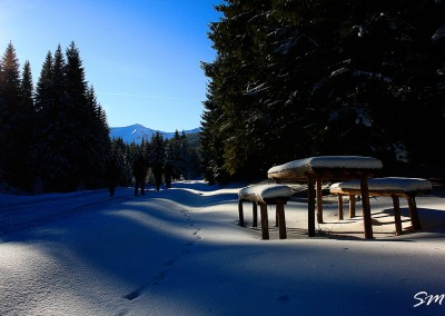 28-muntii-rodnei