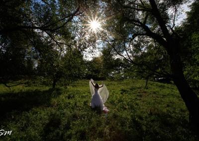 Fotograf Profesionist Nunta Suceava - In livada