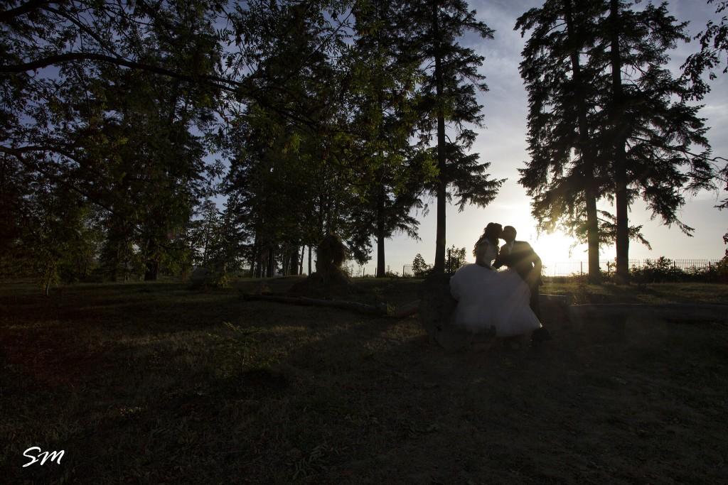 fotograf-nunta-profesionist-suceava (22)
