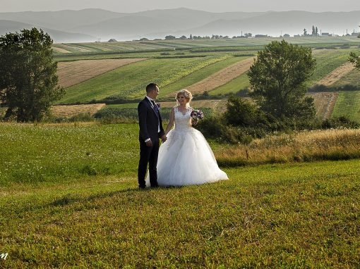 Ionuț & Annemarie – wedding day