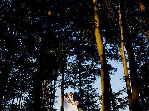 Roxana & Mihai – ziua nuntii