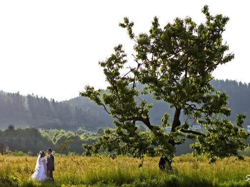 Ilie & Maria – wedding day