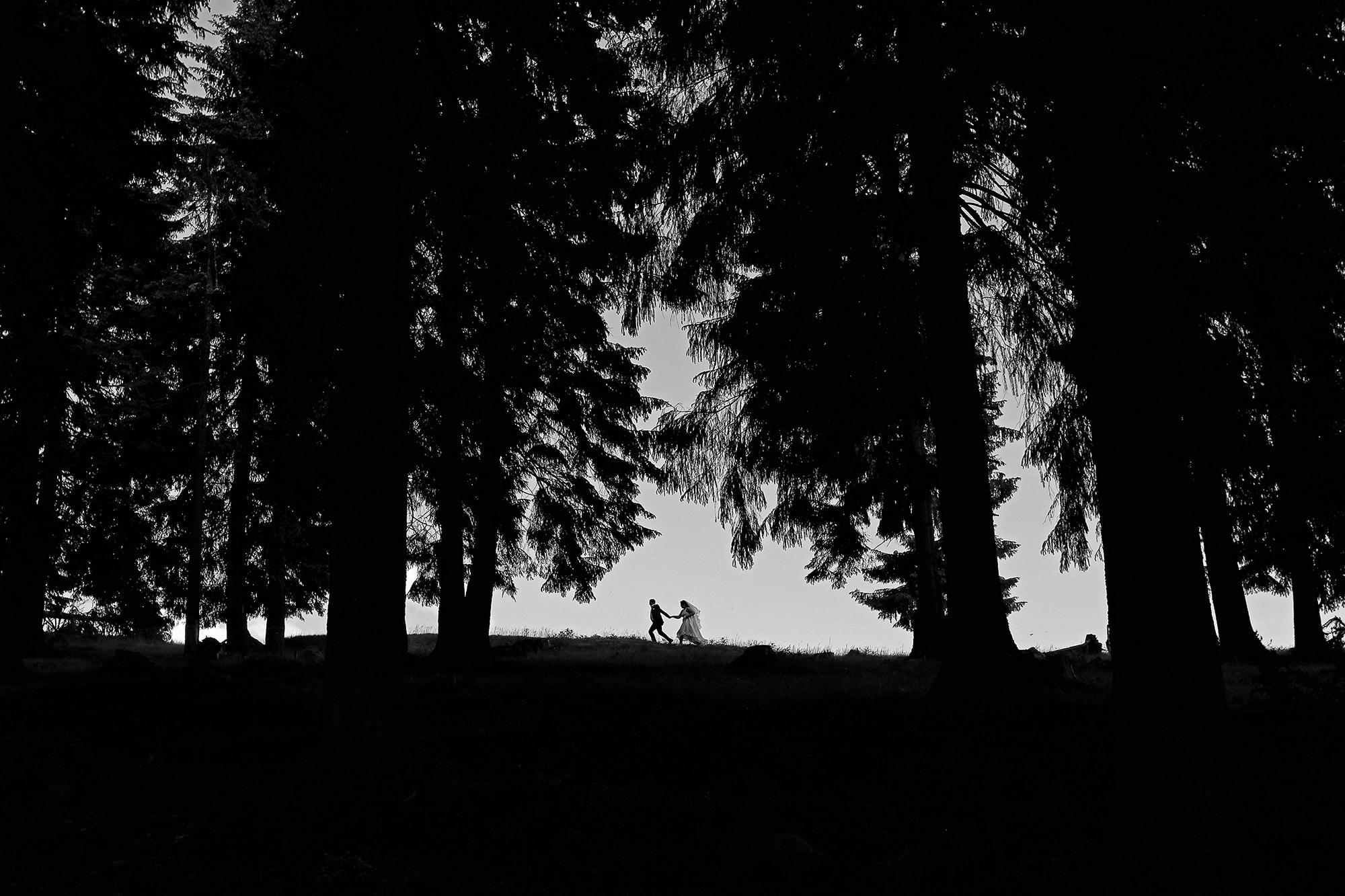 fotograf_nunta_profesionist_suceava-(23)
